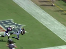 Watch: Allen Robinson hauls in a leaping touchdown reception