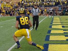 Watch: Michigan TE Jake Butt highlights
