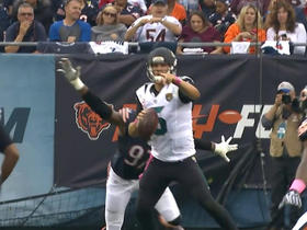 Watch: Willie Young forces sack, fumble on Blake Bortles