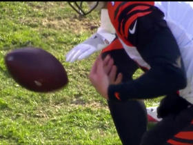 Watch: Andy Dalton fumbles, Ravens recover