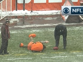 Browns' mascot takes a tumble trying to pick up the ball