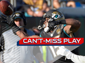 Can't-Miss Play: Allen Robinson makes insane one-handed grab