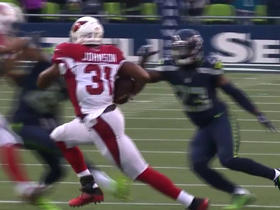 David Johnson breaks off 33-yard run