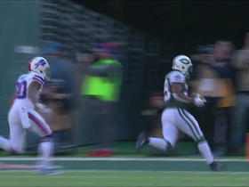 Ryan Fitzpatrick connects with Bilal Powell for 2-yard TD