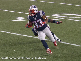 Watch: German announcers call Dion Lewis' 13 yard touchdown reception from Tom Brady