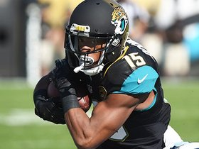 Watch: Allen Robinson Highlights