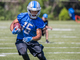 Watch: '4 Downs'- Detroit Lions: 2017 fantasy player to watch WR Golden Tate