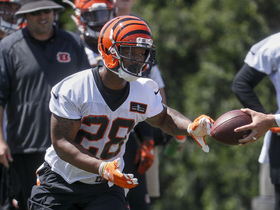 Watch: How quickly can WR John Ross and RB Joe Mixon adjust to the NFL?