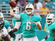Watch: Jay Cutler completes his first pass as a Dolphin