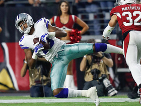 Watch: Brice Butler makes incredible 53-yard catch
