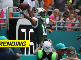 Watch: Robby Anderson grabs the TD and leaps into the stands to take a seat