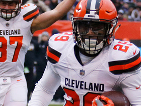 Watch: Duke Johnson bounces outside for 12-yard TD run