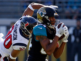 Watch: Keelan Cole hauls in 31-yard pass from Blake Bortles