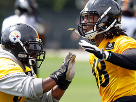 Dupree: Harrison 'went to the Patriots to spit in Coach Tomlin and Mr. Rooney's face'