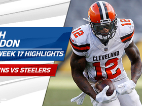 Josh Gordon highlights | Week 17