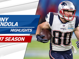 Danny Amendola highlights | 2017 season
