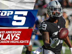 Watch: Top 5 David Amerson plays | 2017 season