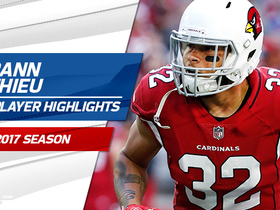 Tyrann Mathieu highlights | 2017 season