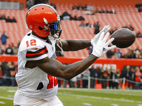 Nate Burleson: Josh Gordon's story is 'perfect' for 'Hard Knocks'
