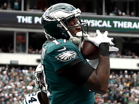 Watch: Alshon reels in highlight-worthy grab on fourth down