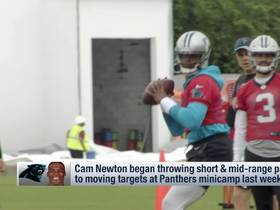 Watch: McCaffrey on Cam's new throwing motion: 'Looks good to me'