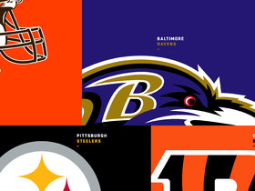 Watch: Top training camp questions: AFC North