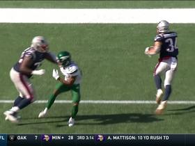 Watch: Pats' new starting LT Marshall Newhouse paves way for Rex Burkehead's TD