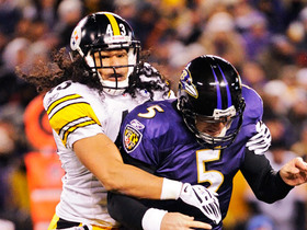 Troy Polamalu's Top 5 plays