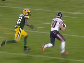 Bears Marc Mariani picks up huge first down