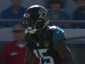 Jaguars Allen Robinson makes leaping catch for 25-yard gain