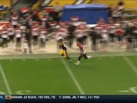 Trick play! Safety Robert Golden completes 44-yard pass on fake punt