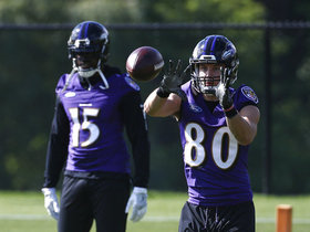 Are Ravens new WRs enough to bring Joe Flacco back to Super Bowl form?