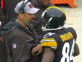 Antonio Brown hugs former OC Todd Haley after catch