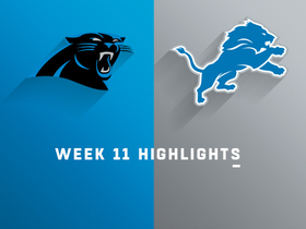 Panthers vs. Lions highlights | Week 11