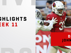 Best plays from David Johnson's 154-yard game | Week 11