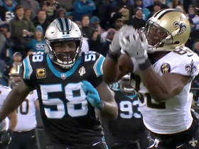 Ben Watson lays out for spectacular 28-yard grab