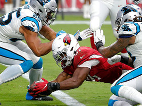 David Johnson dodges host of Panthers on throwback pass for TD