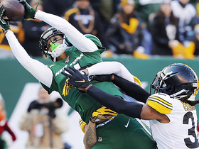 Can't-Miss Play: Robby Anderson climbs ladder for epic TD grab